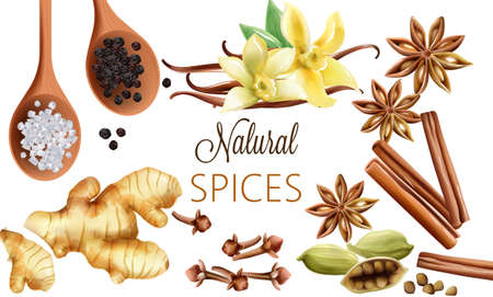 Natural spices composition with salt, black pepper, ginger, cinnamon sticks and vanilla. Ilustração