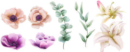 Watercolor set of lily and peony flowers with green leaves. Vector Vettoriali