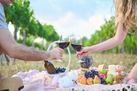 Woman and man making toasts with wine glasses. Picnic outdoors in the vine yards