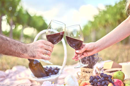 Man and woman hands with two glasses of wine toast at the picnic outdoors. Beautiful summer backgrounds