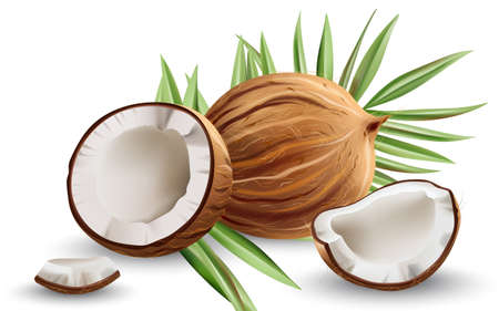 Whole and cracked open coconuts with monstera leaves. Realistic. 3D mockup product placement Illustration