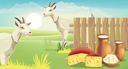 Two goats and meadow near a fence with cheese, cottage cheese and milk on the grass. Realistic. 3D mockup product placement Illustration