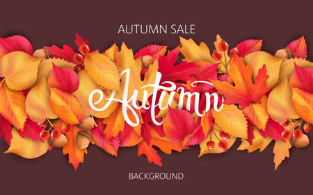 Abstract background with leaves, acorns and berries. Autumnal sale Illustration