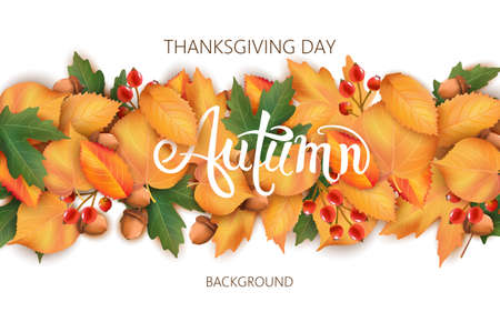Abstract background with leaves, acorns and berries. Autumnal thematics. Thanksgiving day