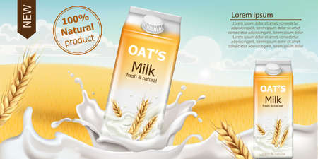 Carton box with fresh and natural oat milk in a field full of grains. Blue cloudy sky. Realistic 3D mockup product placement. Place for text Vector Illustration