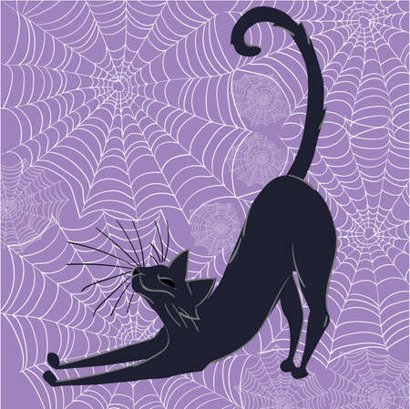 Black cat happily stretching with spider webs in background. Halloween themed composition