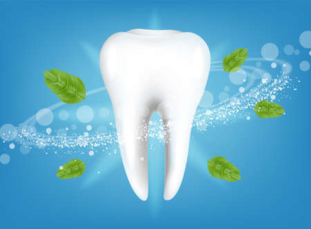 Fresh mint tooth Vector realistic. Special hygiene product placement mock ups
