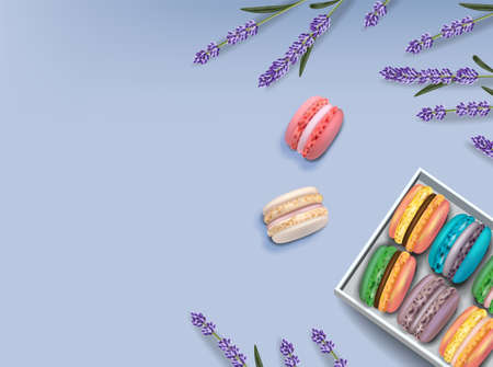 Macaroons set and lavender