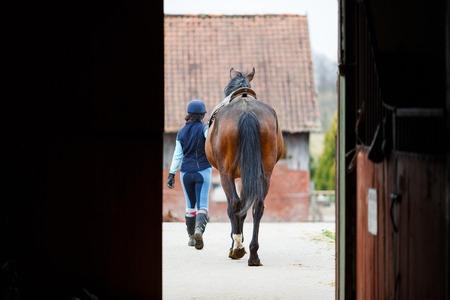 ライダーおよび馬小屋から出て行く馬