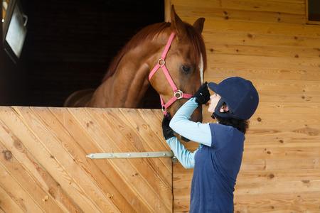 Rider verbinden met bruin paard in een stabiele