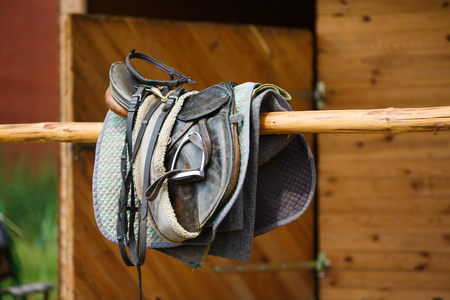 reigns: A leather saddles horse in a stable Stock Photo