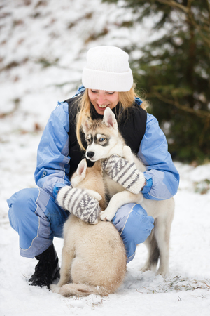 alaskian: Young woman with two husky puppy at winter time