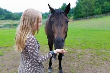 Young girl feeding the horse a carrot on the meadow Stock Photo
