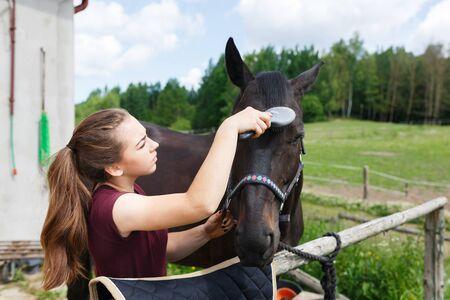 Jeune cavalier est un nettoyage dans un cheval à l & # 39 ; extérieur Banque d'images - 80604704