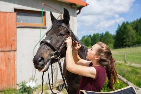 Young girl saddles a horse outdoors