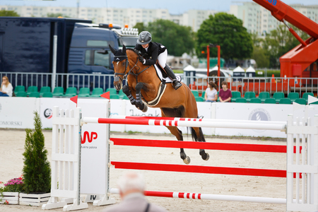 Sopot, Poland - June 10 2017: Horse rider is jumping over obstacles in the arena during CSIO Sopot 2017 competitions Editorial