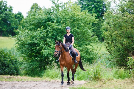 Horse rider is walking against the background of the forest Stock Photo