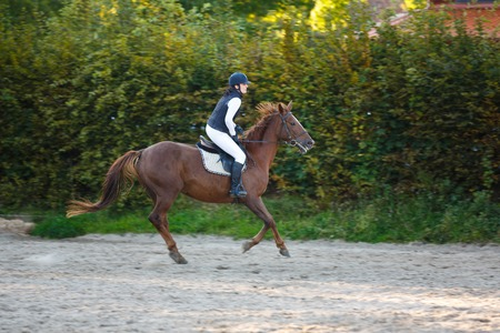 Horsewoman is riding on the competition outdoors