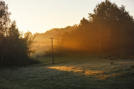 The morning misty sunlight in countryside in autumn