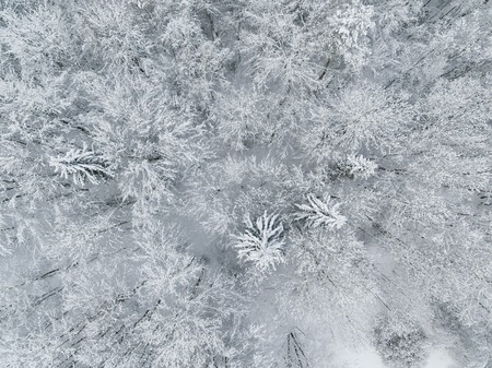 Aerial: Snow-covered countryside in winter Imagens