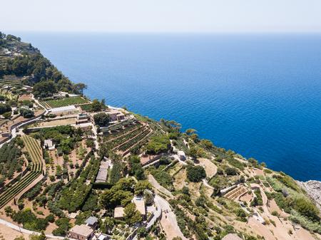 Aerial: Banyalbufar town in Mallorca