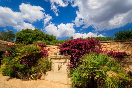 Private garden in summer Stock Photo