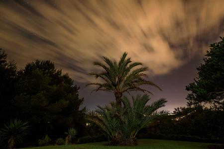 The garden under cloudy night sky, long exposure Stock Photo