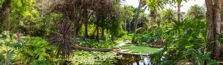 Botanic garden of Santa Cruz de Tenerife, Canary Islands