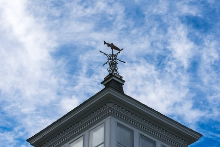 Fish shaped weather vane against the blue sky, at an upward angle