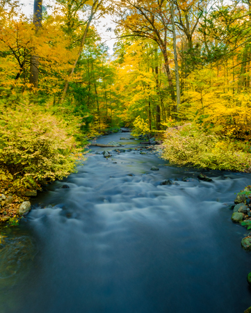 Long exposure of a river running through a colorful Autumn scene in rural Upstate New York, Sleepy Hollow, NY, USA 免版税图像