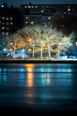 Trees reflecting in the East River at night, New York City