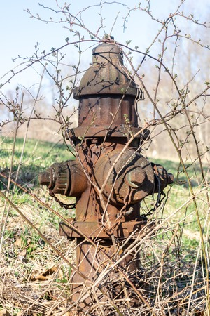 Old rusty overgrown hydrant in a field in Upstate New York