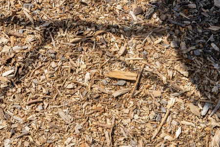 Wood chips and small pieces of dried wood lying on the ground