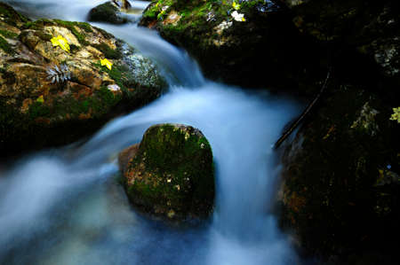 bourn: Little bend in a mossy stream Stock Photo