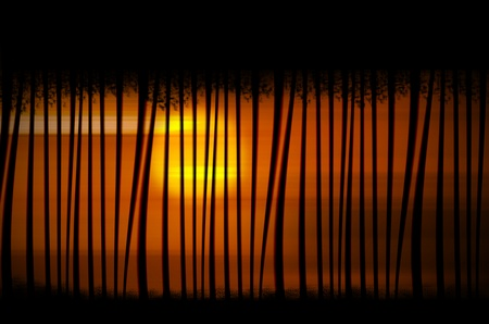 Texture with stylized trees and the African landscape at sunset photo
