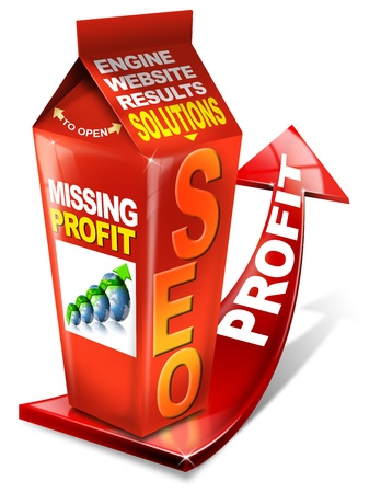 Carton SEO missing profit - Search engine optimization web Stock Photo - 10441924