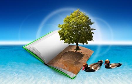 educacion ambiental: Ilustración con un libro abierto sobre el agua con árboles y patos