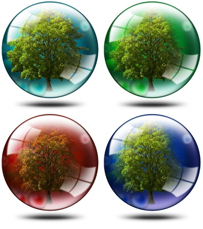 Four trees with leaves inserted balls of various colors, ecology concept Stock Photo - 11356215