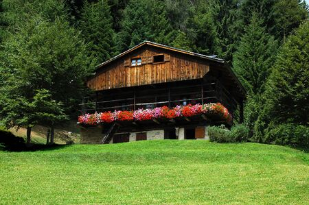 Mountain wood chalet with meadow and forest - Alps Italy Stock Photo - 11355659