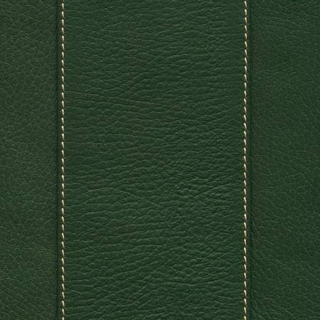 pelt: Dark green leather with center band and white seams Stock Photo