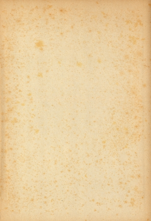 yellowed: Rectangular empty old yellowed paper with mold stains