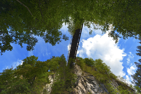 The canyon Slizza  Italy  between a dense forest with blue sky and clouds photo
