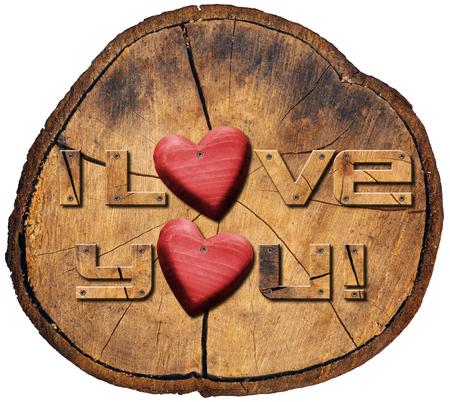 I love you written in wood on a trunk section with two red hearts, concept of love  photo