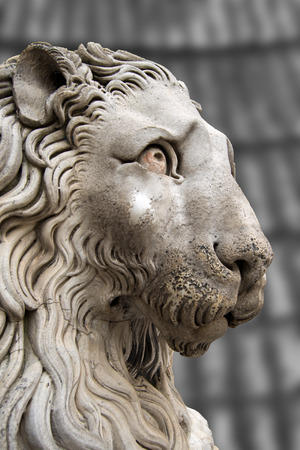 Sculpture of a stone lion in cathedral of St  Lawrence  San Lorenzo  - XII-XIV century in Genova, Liguria, Italy photo