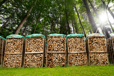 Dry chopped firewood logs in a pile covered with nylon sleeve in a green forest photo