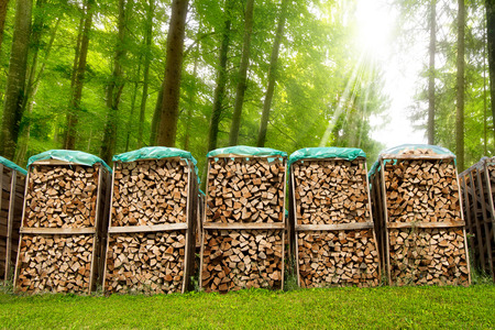 Dry chopped firewood logs in a pile covered with nylon sleeve in a green forest