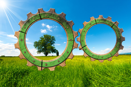 Two wooden gears with green tree in countryside, concept of green economy.