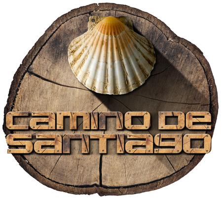 camino: Pilgrimage wooden symbol of Santiago de Compostela with seashell (Camino de Santiago). Isolated on white background