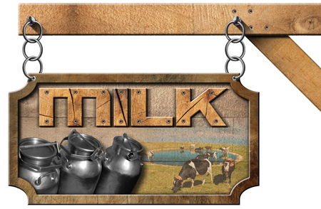 grazing: Wooden and metallic sign with text Milk steel cans for the transport of milk and cows grazing. Hanging from a metal chain on a pole and isolated on white