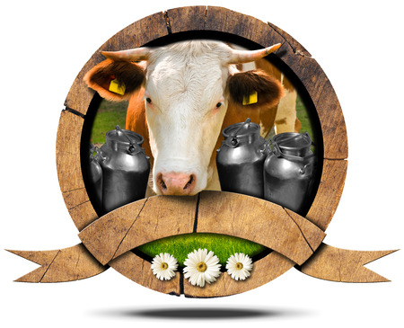 s horn: Wooden symbol with head of cow cans for the transport of milk green grass and three daisy flowers. Wooden empty ribbon for your text. Isolated on white